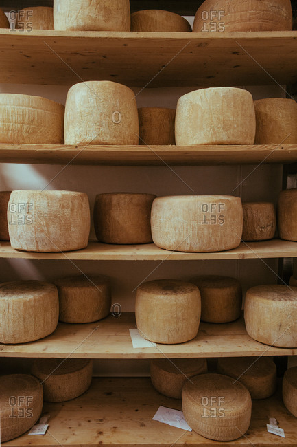 Rows of artisan pecorino cheese, Tuscany, Italy