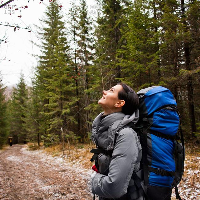 Female hiker looking up in forest, Sarsy Village, Sverdlovsk Oblast, Russia
