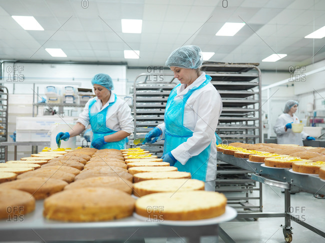 Female workers spreading filling on cakes in cake factory