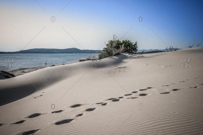 Sand dunes, Cagliari, Sardinia, Italy