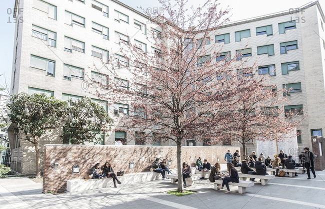 Milan, Italy - March 17, 2016: Students gathered around a tree outside the Bocconi School of Management in Milan, Italy