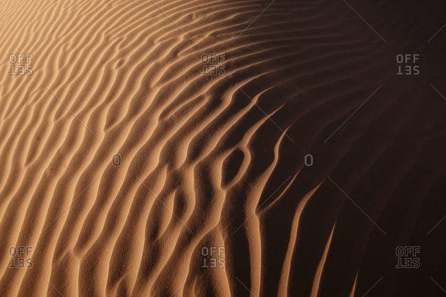 Lines in the desert sand