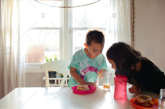 Boy and girl having lunch together at dining table