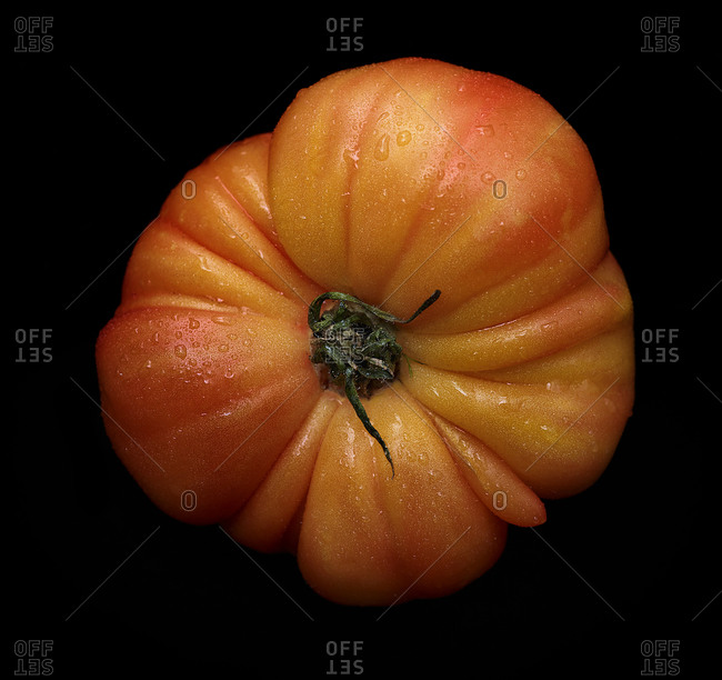 Close up of a tomato