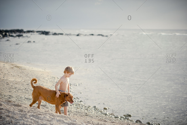 Young boy walking on beach with dog
