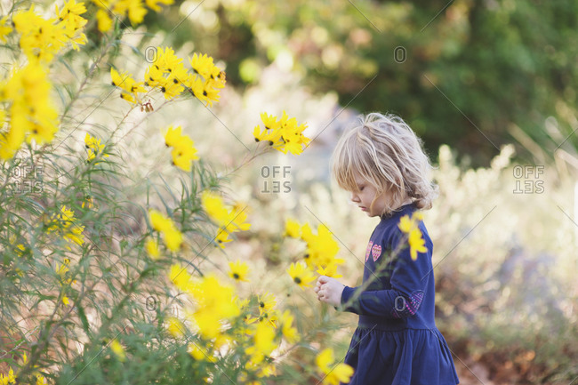 Toddler girl with looking at yellow flowers