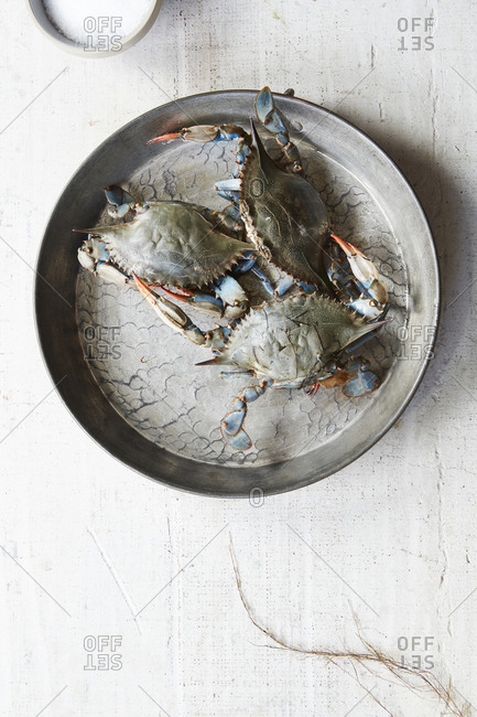 Platter of fresh, raw blue crabs