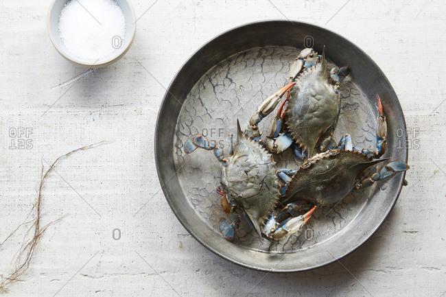 Fresh, raw blue crabs on a platter