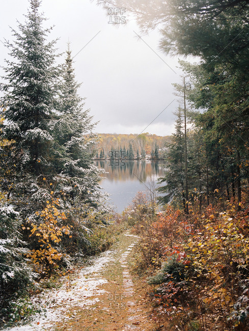 Snow-dusted path to forest lake