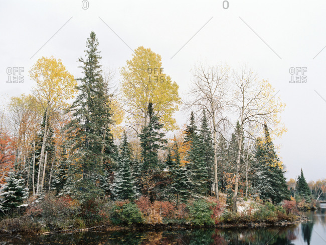 Colorful lakeside autumn trees dusted with snow