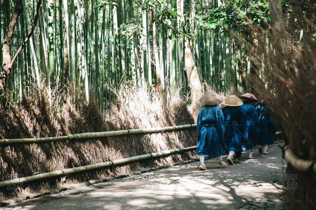 Monks in blue robes walk in a row along a bamboo-lined path in Japan