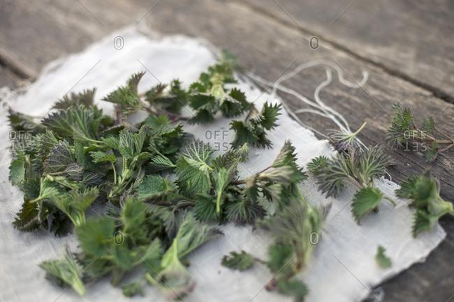 Nettle leaves on linen cloth