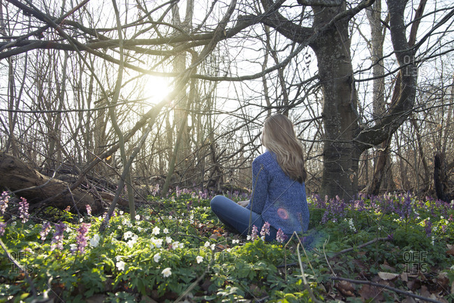 Woman sitting in patch of wood anemone in forest