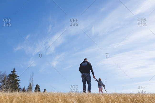 Little girl walking with her father in a grassy field