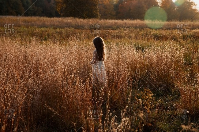 Little girl standing in a field of golden grass