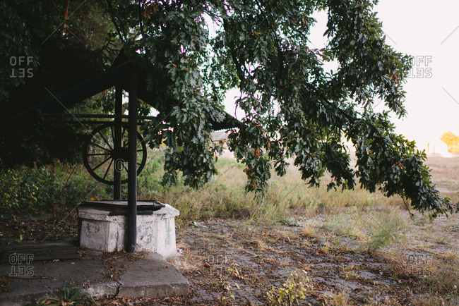 Old water well under a tree in the country