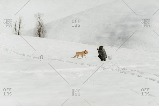 Photographer taking a picture of a dog on a snowy hillside