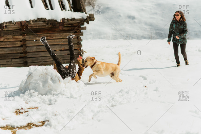 Man and woman playing with a yellow lab on a snowy hillside