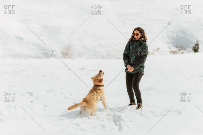 Woman playing with a yellow lab in the snow