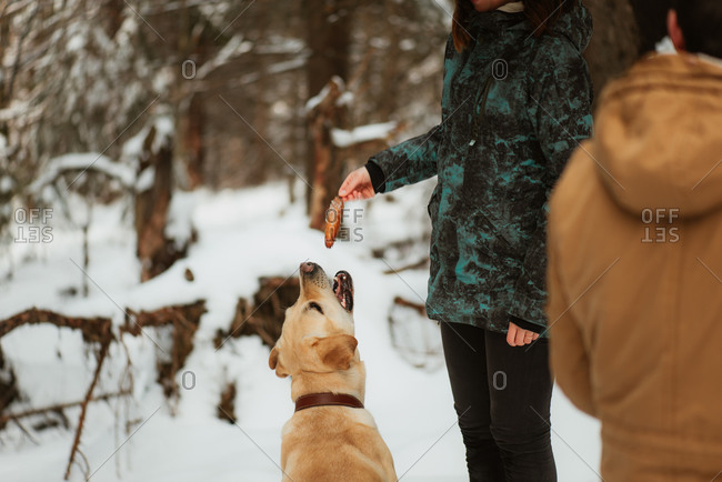 Woman teasing her dog with a pine cone in a snowy forest