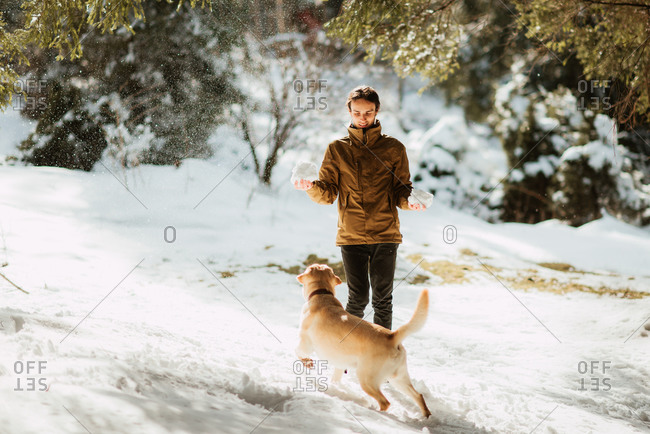 Young man holding chunks of snow in a forest with his dog