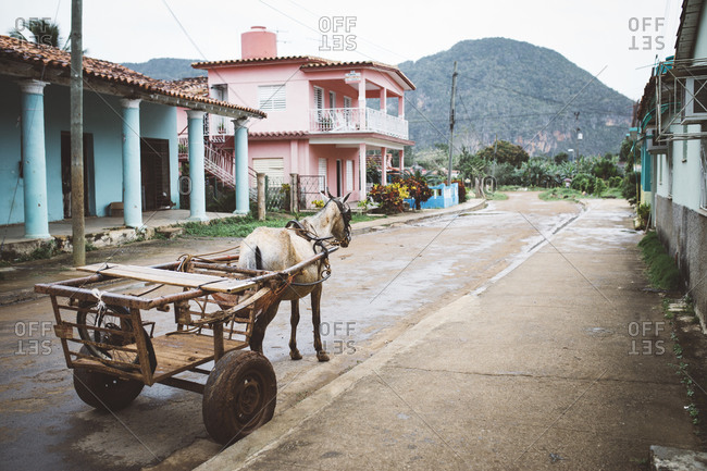 Horse pulling cart in Cuban town