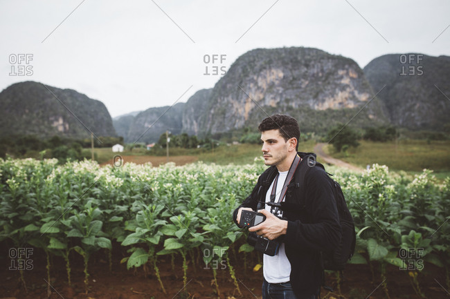 Man with camera in tobacco field