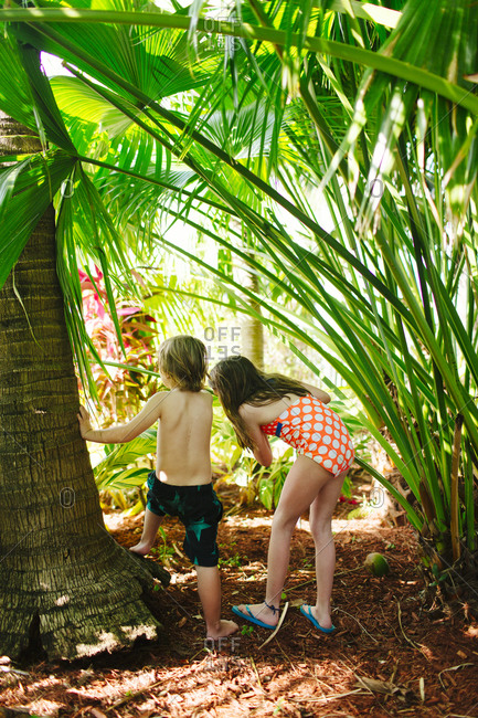 Boy and girl standing next to a palm tree in their bathing suits