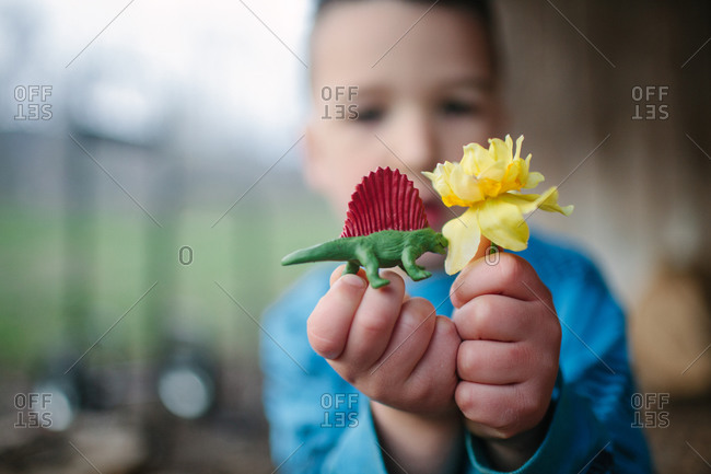 Little boy holding yellow flower and toy dinosaur