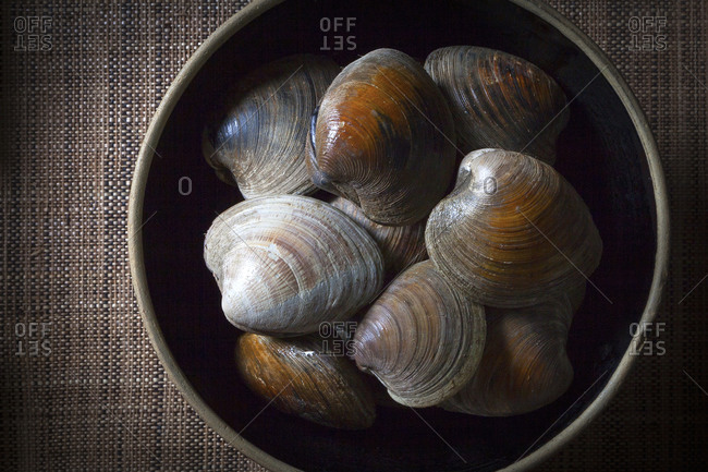 closed clams in a bowl