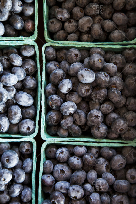 Fresh blueberries in containers