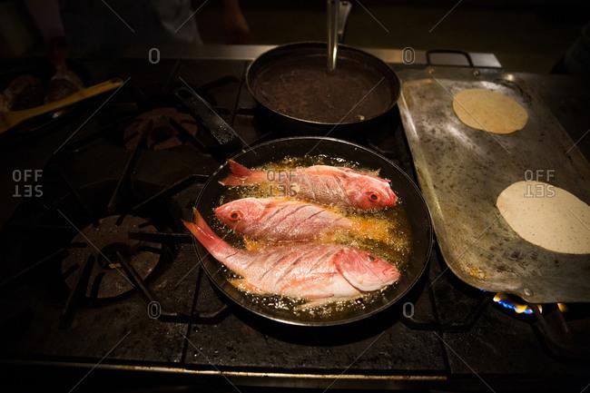 Fresh fish frying in skillet