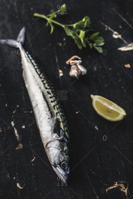 Raw mackerel fish, lemon on wood