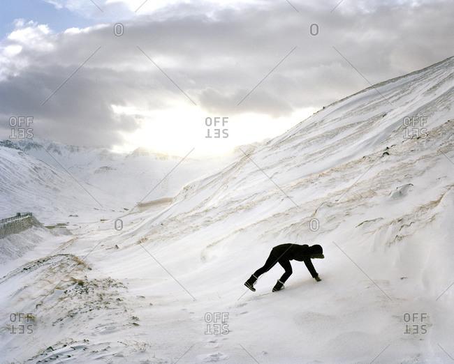 Woman sticking her hands in snowy hillside in Siglufjörður, Iceland