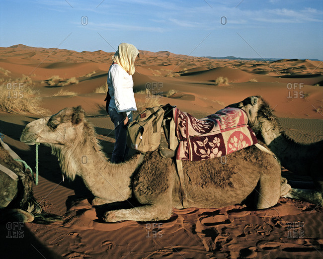 Woman standing next to a caravan of camels