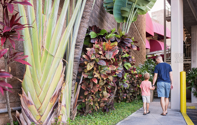 Father and son walk hand in hand on sidewalk with tropical plants