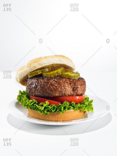 Bison burger on a white background