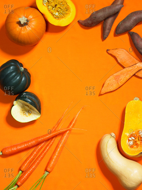 Pumpkin, carrot, sweet potato, yam, butternut squash, and acorn squash on an orange background