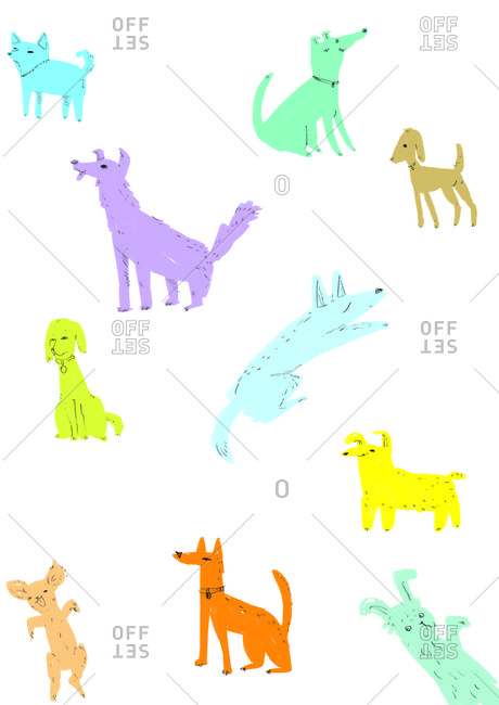 Colorful dogs in a pattern on a white background
