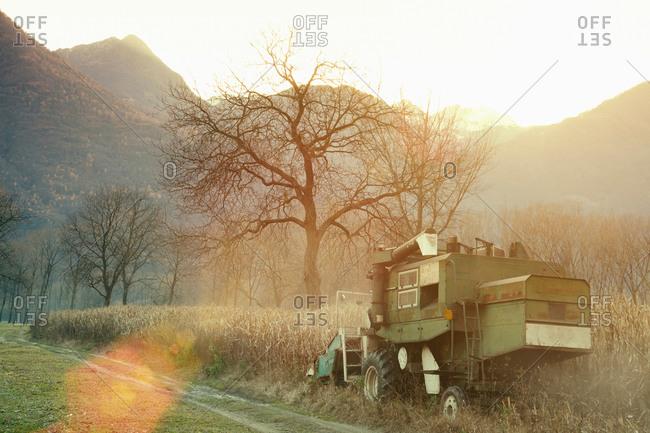 Combine harvester harvesting in field, Premosello, Verbania, Piemonte, Italy