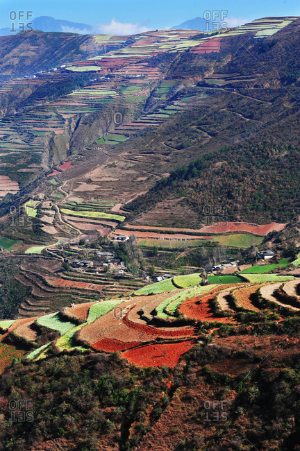 Terraced fields in Yunnan, China