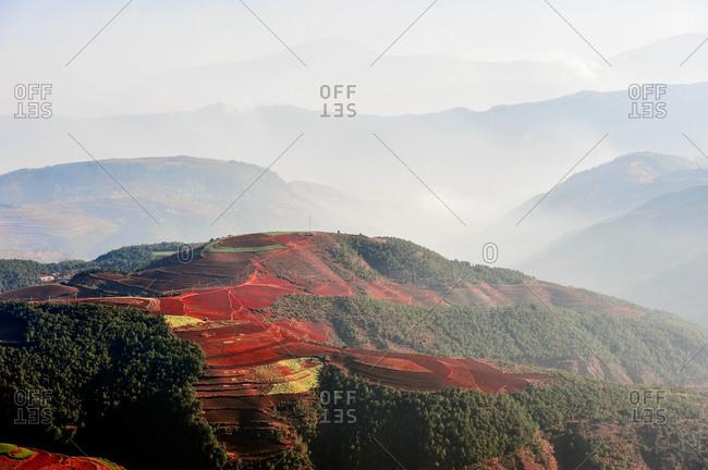 Terraced fields, Yunnan, China - Offset