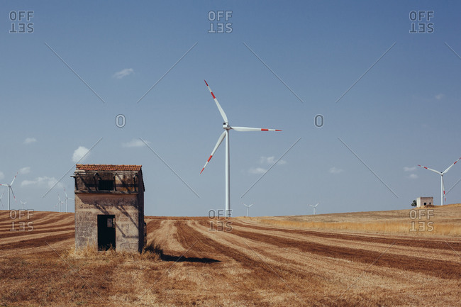 Windmills on farm, Italy