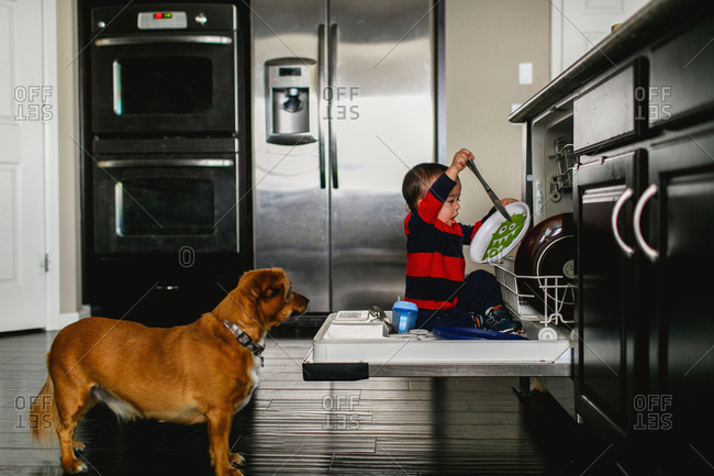 Toddler playing in dishwasher - from the Offset Collection