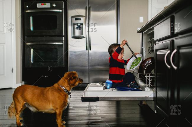Toddler playing in dishwasher
