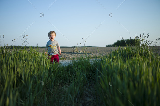 Toddler boy playing in field at dusk