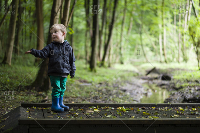 Young boy walking on wooden bridge in the woods