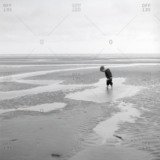 Young boy wading in tide pools on the beach