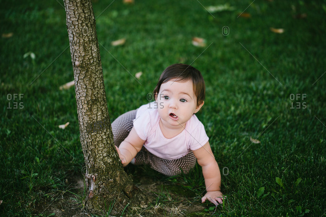 Baby sitting by tree in grass