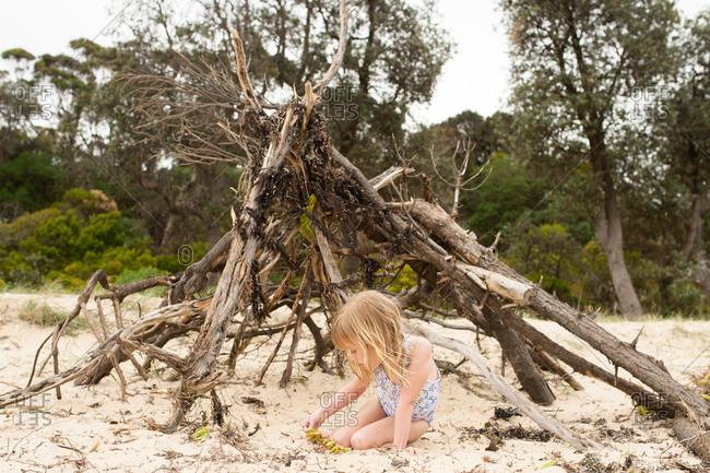 Girl examining coastal plant